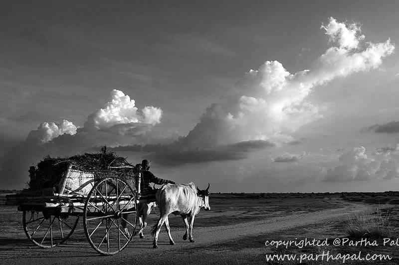 Rural india street view simple and unbound by partha pal birbhum west bengal india