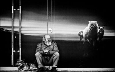 'Entre chien et loups' by Yvon Buchmann, France