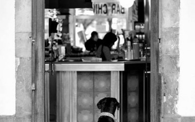 'Waiting for my Friend' by Photography Plus, Aviles, Spain