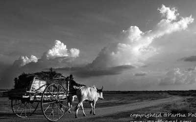 'Rural India street view..........Simple and Unbound.' by Partha Pal, Birbhum, West Bengal, India